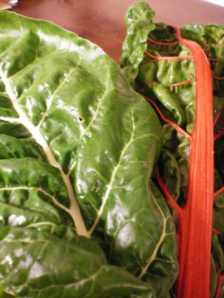 My first bunch of swiss chard