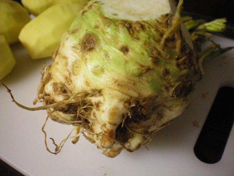 CeleryRoot